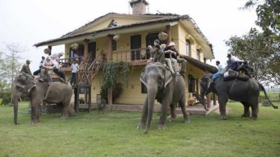 'Visit Sauraha campaign' to attract tourists