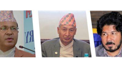 Parliamentary hearing for three ambassadors postponed until next week