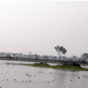 After visitors' uptick, Barju lake gets facelift as new destination in eastern Terai